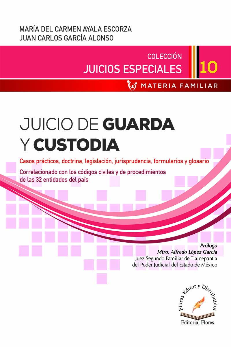 JUICIO DE GUARDA Y CUSTODIA (10)