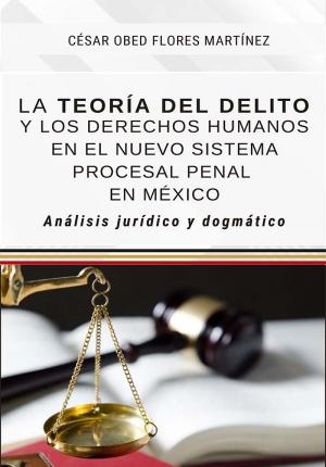 LA TEORÍA DEL DELITO Y LOS DERECHOS HUMANOS EN EL NUEVO SISTEMA PROCESAL PENAL EN MÉXICO