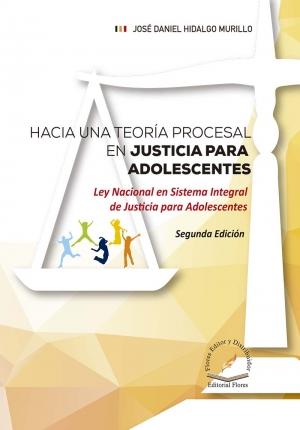 HACIA UNA TEORÍA PROCESAL EN JUSTICIA PARA ADOLESCENTES